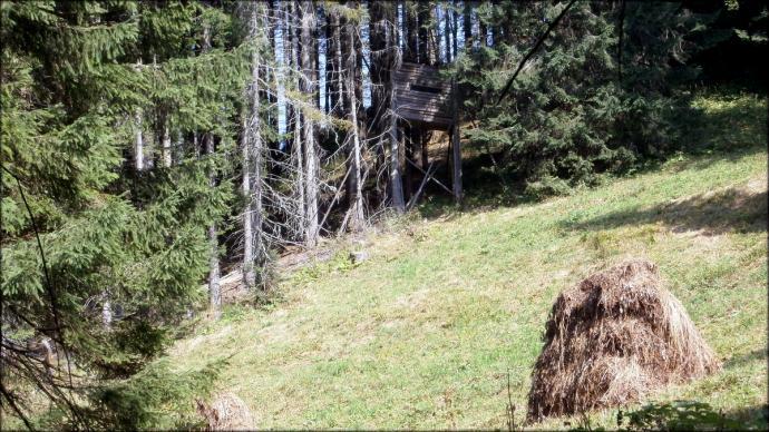 Fałszywa ochrona przyrody - jedna z wielu ambon myśliwskich TANAP