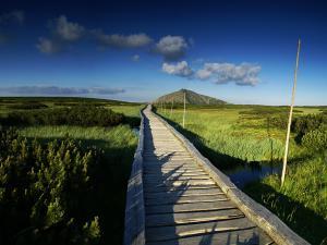 Drewniane pomosty pośród karkonoskiej tundry. To jeden z najbardziej kojących widoków w Karkonoszach.