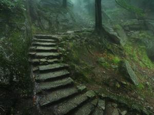 Stare kamienne schody prowadzące do Zamku