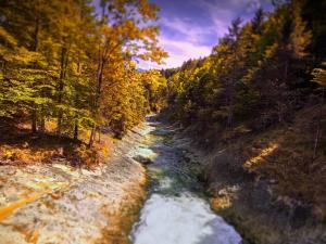 Alpejski potok górski