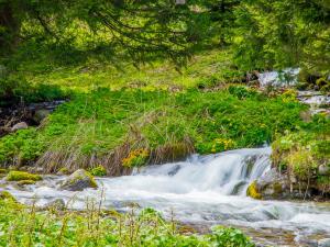 Potok Bystra