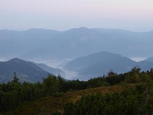 Poranne mgły