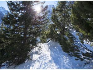 Ciąg dalszy szlaku na Szpiglasową Przełęcz