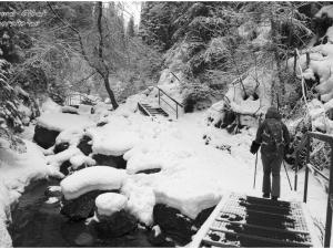 Wąwóz Homole zimą