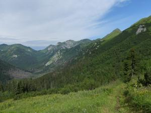 Tichá dolina oraz Tatry Zachodnie (widok z zejścia Kasprowego)