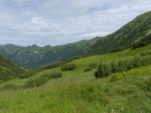 Ale w koło jest zielono (Tichá dolina)