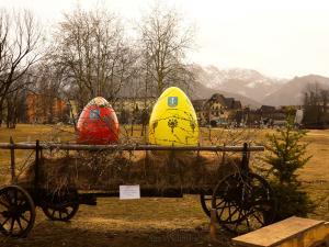 Pozostałości po jajach.:)