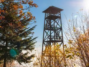 Wieża widokowa pod Jaworzem.