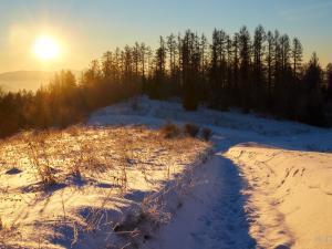 Z każdą chwilą słońce coraz wyżej
