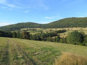 Przypadkowe wejście do doliny nieistniejącej wsi Bieliczna i zakochałam się w Beskidzie Niskim