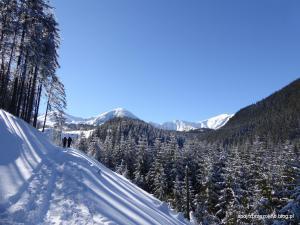 Na skitourach w stronę Kasprowego