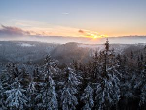 Zimowy widok z wieży widokowej na Dzikowcu