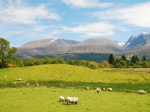 Ben Nevis Szkocja