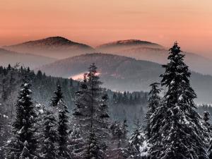 Góry Grybowskie
