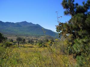 Prawie jak Bieszczady, La Palma