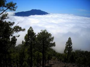 Morze chmur na La Palmie