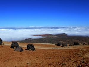 Huevos del Teide, Teneryfa
