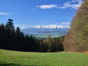 Przełęcz Szopka i widok na Tatry