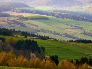 Lasy, pola i śpiew ptaków.
