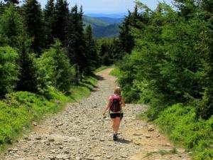 Zielony szlak w stronę Skały Malinowskiej