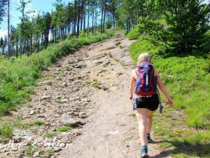 Czerwony szlak w stronę szczytu Malinów