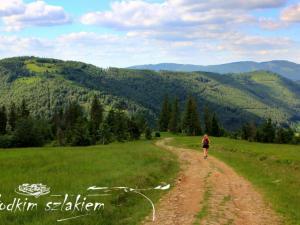 Zielony szlak w stronę przystanku Szczyrk-Salmopol