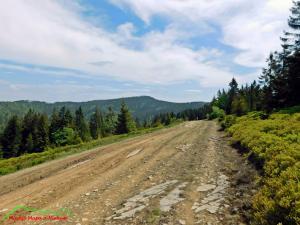 W drodze na Turbacz