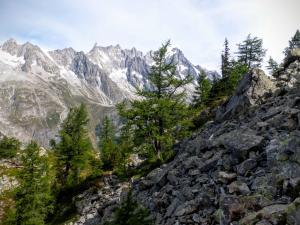 Masyw Mont Blanc ze szlaku na Mont Chetif