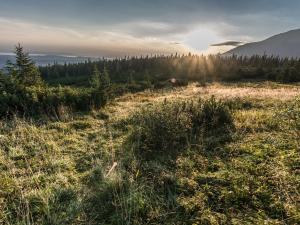 Poranek w rejonie Przełęczy Między Kopami