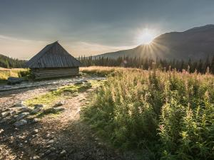 Hala Gąsienicowa w promieniach porannego słońca