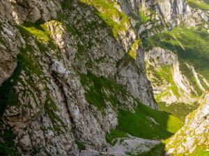 Krajobraz Kobylarzowego Żlebu.