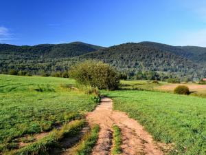 Szlak w Wołosatego z widokiem na Kiczerę i Beskid Wołosacki