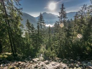 Szlak na Grzesia skąpany w porannym słońcu
