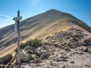 Szlak prowadzący na szczyt Wołowca