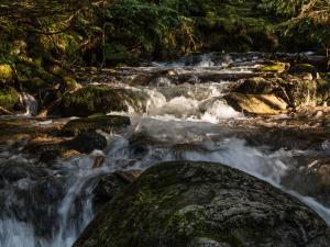 Jarząbczy Potok skąpany w popołudniowym słońcu
