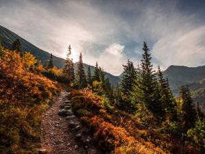 Jesienny wschód w Dolinie Rohackiej