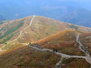Szlak na Wołowiec widziany ze szczytu