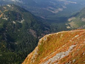 Wolność w górach