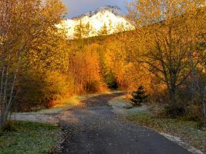 Szlak żółty ze Smokowca do Doliny Wielickiej