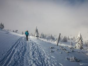 Na zimowym szlaku