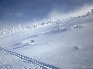 Ekspress śnieżny
