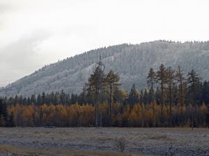 Oszroniony Dzikowiec otoczony jeszcze kolorowym lasem.