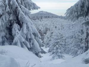 Wysoki Kamień w środku zimy.