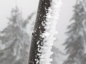 Rzeźbiasrtwo zimowe artystyczne - w drodze na Łabski Szczyt.