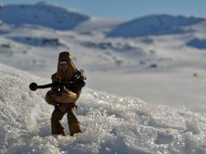 Chewbacca przyjechał ze mną na celebrację dnia Star Wars.