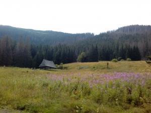 chatka w dolinie