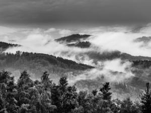 Dymiący Las
