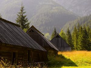 Dolina Jaworzynki.
