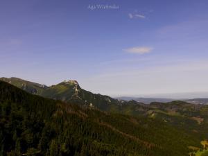 Widok z Przełęczy między Kopami- na Giewont.