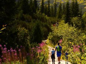 Wędrówka w góry- oto odpowiedź na pytanie, jak idealnie spędzić czas z dzieckiem!